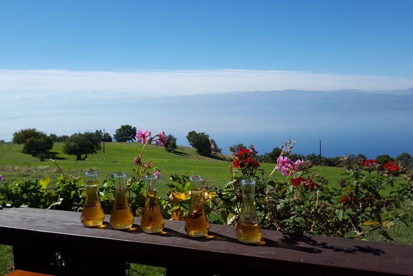 ohrid lake view