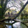 Saint Naum springs