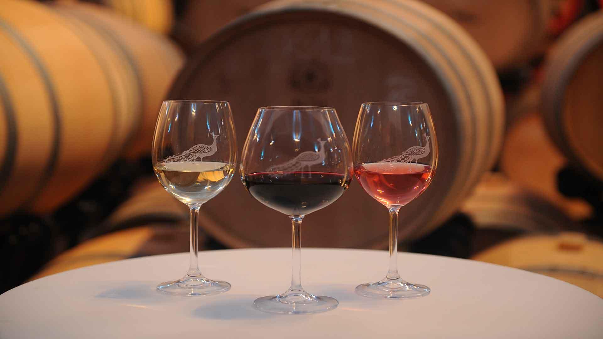 wine tasting balkans