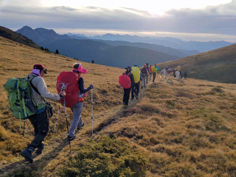 people hiking mountain